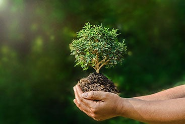 ISO 14001 Environmental Policy Program